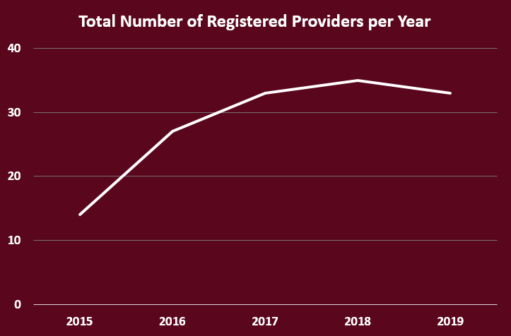 total number of registered providers per year